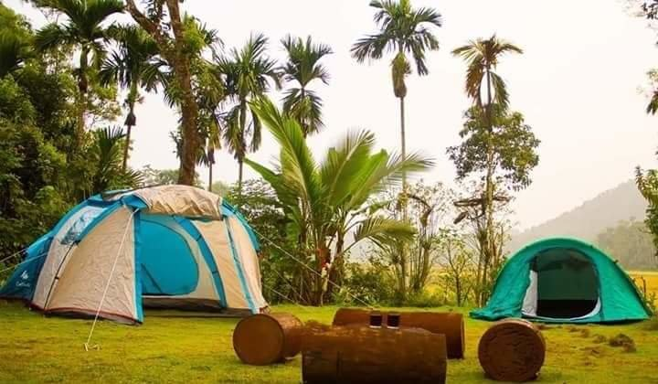 Fascinating Reasons to go for Night Camping near Bangalore