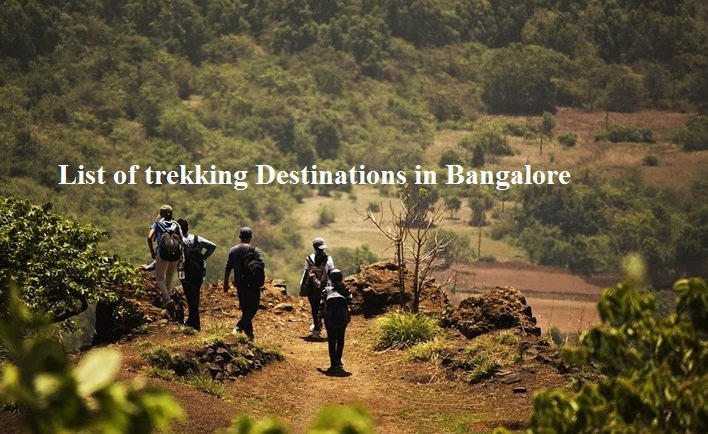 Most Alluring Trekking Destinations in Bangalore that you shouldn't miss!